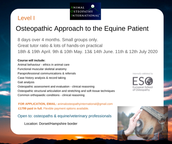 Stage I Summer Equine Osteopathy.png